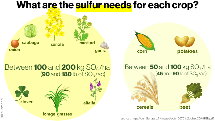 needs-of-cultures-in-sulfur-infography